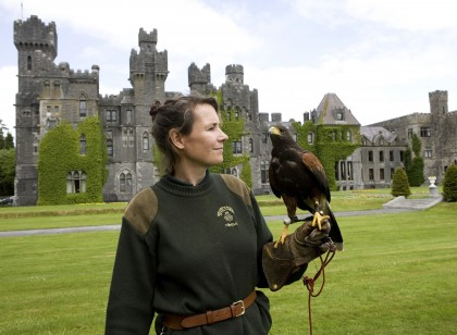 Chauffeur Driven Ireland Vacation - Ashford Castle Falconry